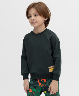 свитшот button blue для мальчика, зеленый